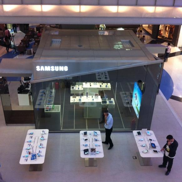 Samsung PIN Moskau 2013: Projektmanagement und -steuerung, Kostenmanagement, Realisierung (für hvs)